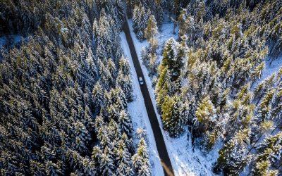 Winter Winter Forest Street Car