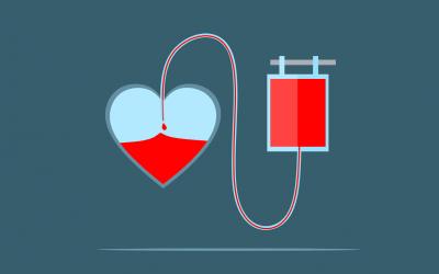 Heart Blood Donation Bag Donate  - mohamed_hassan / Pixabay