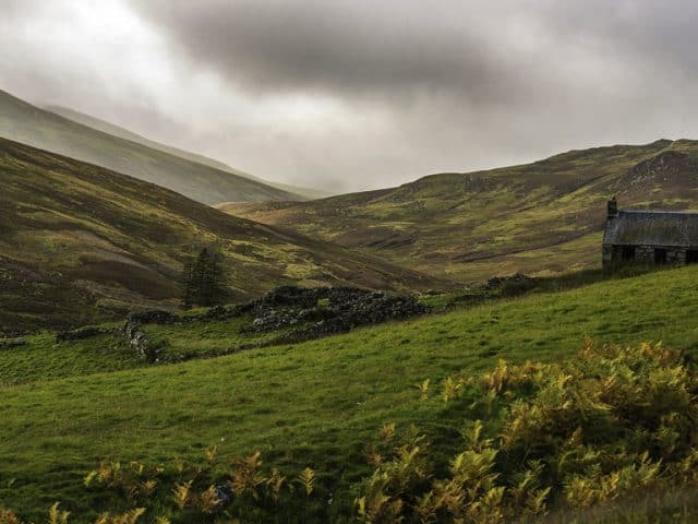 Take a Walk on The Nordic Side in Highland Perthshire